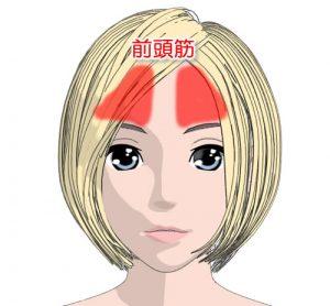 前頭筋は眉の上の筋肉